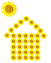 Sunflower home image isolated Royalty Free Stock Image