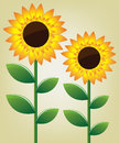 Sunflower illustration spring abstract background Royalty Free Stock Photography