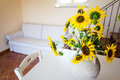 Sunflower lounge a bunch of vibrant potted sunflowers into a warm and cozy living room Stock Photography