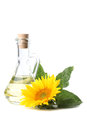 Sunflower oil Royalty Free Stock Photos
