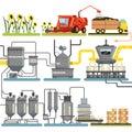 Slnečnica olej výroba spra priebeh úroda slnečnica a obal z hotový produkty vektor ilustrácie
