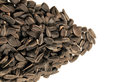 Sunflower seeds background close up studio Stock Photos