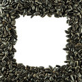 Sunflower seeds frame Stock Photos