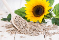 Sunflower Seeds (Macro Shot) Royalty Free Stock Photo