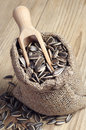 Sunflower seeds in a sack and spoon on wooden table Royalty Free Stock Photo