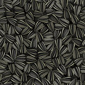 Sunflower seeds seamless background Stock Photography