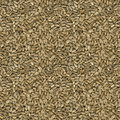 Sunflower Seeds Seamless Texture Royalty Free Stock Photo