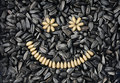 Sunflower seeds smiling Stock Photos