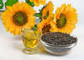 Sunflower seeds and vegetable oil on white background Stock Images