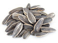 Sunflower seeds on white background close up Stock Photos
