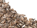 Sunflower seeds on white. Royalty Free Stock Photo