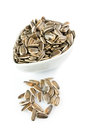 Sunflower seeds on white close up Stock Images