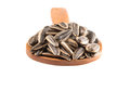 Sunflower seeds in wooden spoon iii on spoons over white background Royalty Free Stock Images