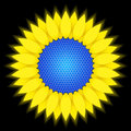 Sunflower - solar battery Stock Photography