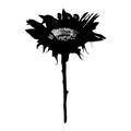 Sunflower stencil Royalty Free Stock Photo