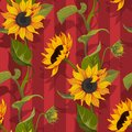 Sunflower vector seamless pattern floral texture on red stripes background