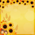 Sunflowers frame illustration of in autumn Stock Photo
