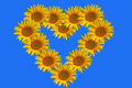 Sunflowers heart Royalty Free Stock Images