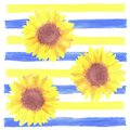 Sunflowers or Helianthus flowers a symbol of adoration and loyalty seamless watercolor background Royalty Free Stock Photo
