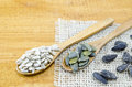 Sunflowers seeds in wooden spoons Royalty Free Stock Photo