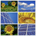 Sunflowers and solar panels collage Royalty Free Stock Photo