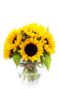 Sunflowers in a vase over white Royalty Free Stock Photos