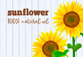 Sunflowers on white wooden background illustration