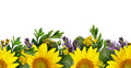 Sunflowers and wild flowers seamless border Royalty Free Stock Photo