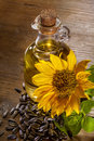 Sunflowr and oil sunflower domestic seed Royalty Free Stock Image