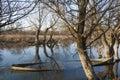 Sunken boat on the lake Stock Photo