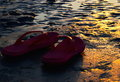 Sunlight fallen into the reddish slippers around the beach area beautiful photograph Stock Image