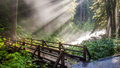 Sunlight through the steam at sol duc s natural hot springs Stock Photo