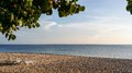Sunlit closeup image of old trees and loungers on tropical beach sandy at sunrise in cuban resort Stock Photo