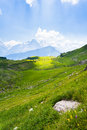 Sunlit pasture rolling hills with snow capped peaks in the background in the swiss alps and a spot Royalty Free Stock Photos
