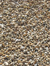 Sunlit Pebbles Royalty Free Stock Photo