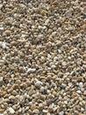 Sunlit Pebbles Royalty Free Stock Photo