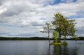 Sunlit small island with trees in a calm lake in sweden Royalty Free Stock Photo