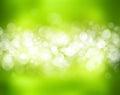 Sunny Abstract Green Nature Ba...