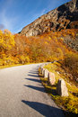 Sunny autumn at Gamle Strynefjellsvegen, National tourist road,