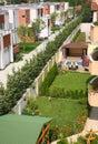 Sunny backyard garden Stock Image