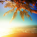 Sunny beach perfect in the evening square composition Royalty Free Stock Photos