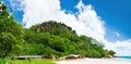 Sunny beach svart vaggar i grön skog Fotografering för Bildbyråer