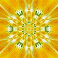 Sunny rug and carpet, yellow flower kaleidoscope Royalty Free Stock Photo