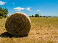 Sunny Contryside in the summer Royalty Free Stock Photo