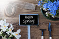 Sunny Flowers, Sign, Text Hello Spring