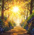 Sunny forest wood trees Original oil painting. Road in sun summer flowers park alley impressionism fine art Royalty Free Stock Photo