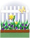 Sunny garden Royalty Free Stock Photo