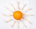Sunny melon Royalty Free Stock Photo