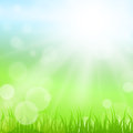 Sunny Nature Background
