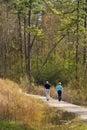 Sunny Nature Walk Trail